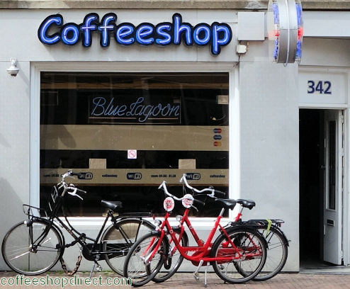 coffee shop Blue Lagoon, Amsterdam, Noord Holland for cannabis with address, telephone number, opening times, Facebook, Instagram, reviews, menu, map, picture
