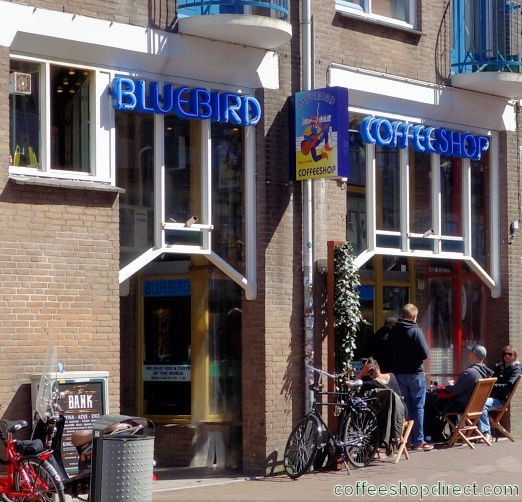 coffee shop Bluebird, Amsterdam, Noord Holland for cannabis with address, telephone number, opening times, email address, Facebook, Instagram, reviews, menu, map, picture
