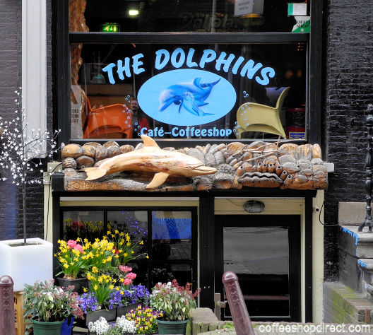 coffee shop The Dolphins, Amsterdam, Noord Holland for cannabis with address, telephone number, opening times, Facebook, Instagram, reviews, menu, map, inside view, picture