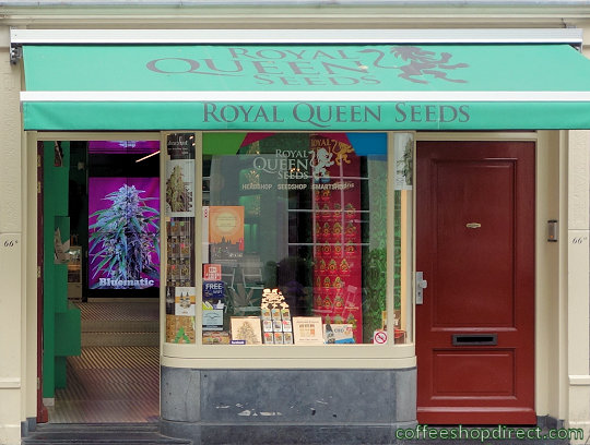 grow shop Royal Queen Seeds 3, Amsterdam, Noord Holland for seeds and growing equipment with address, opening times, map, inside view, picture